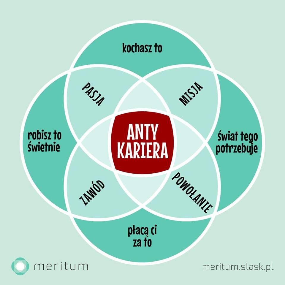 Antykariera - w poszukiwaniu pracy życia
