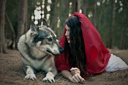 Biegnąca z wilkami - warsztaty rozwojowe